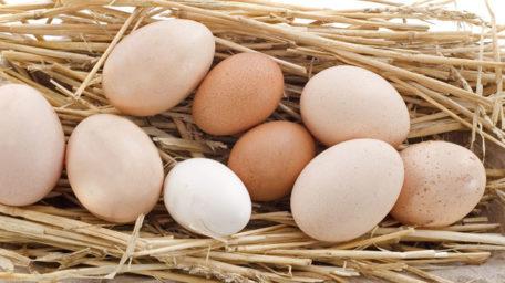 Ouăle sunt sănătoase?