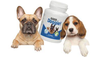 Good Doggie – are grijă de articulațiile și blana cățeilor