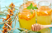 Sirop de cătină – remediu pentru imunitate. Rețete simple